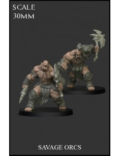 Savage Orcs 2 miniatures
