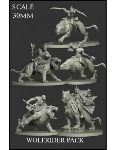 Wolfrider Pack 5 Miniatures