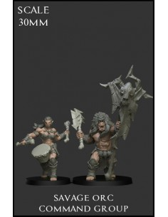 Savage Orc Command Group