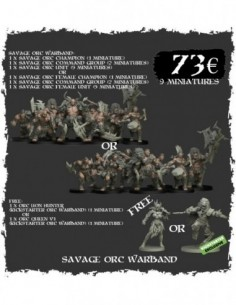 Savage Orc Warband